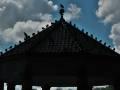 Pavillon mit Tauben Silhouette