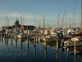 Yachthafen von Faaborg