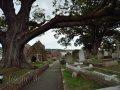 Kirche mit Baum und Friedhof St. Brelade