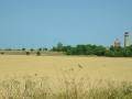 Felder und die Türme von Arkona