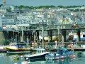 Yachthafen von St. Peter Port