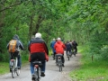 mit dem Rad durch Eichenwälder Terschellings