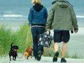 Paar mit 2 Dackeln geht zum Strand