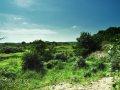 Dünenlandschaft Kobbeduinen