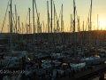 im Yachthafen von Vlieland